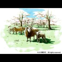 ogawa_work02